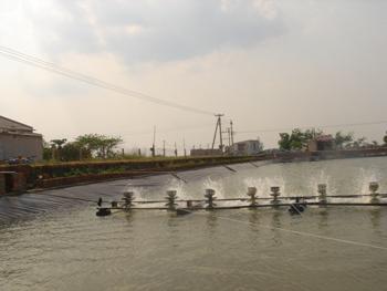 Màng chống thấm HDPE - Huitex - Đài Loan